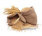 Зерновой набор Гречневый Эль от Фомы Менделеева
